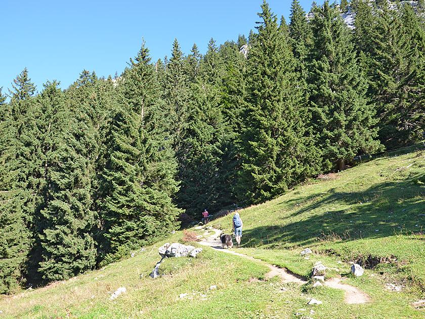 Touren - BERGFEX - Fischbachau - Rodeln Fischbachau